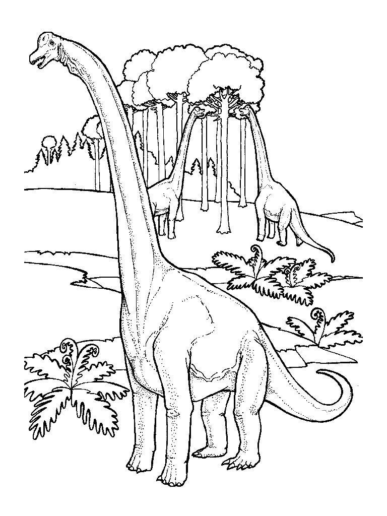 Dinozaury kolorowanki - Dessin diplodocus ...